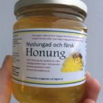 Dags att börja skörda första honungen