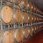 Härliga viner i höst - gott till kalvkött